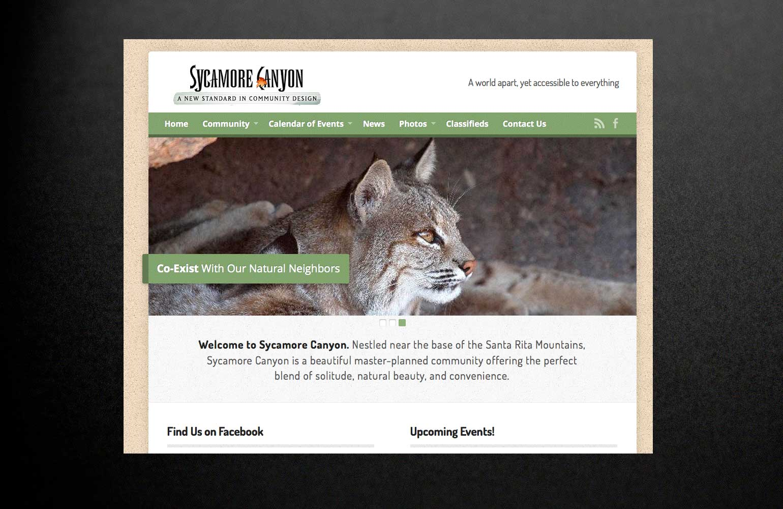 sycamore-canyon-tucson-website-development-suzy-tracy