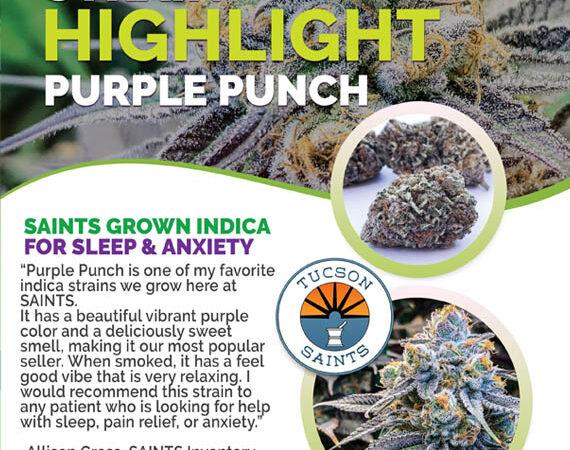 strain highlight purple punch